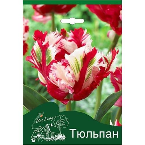Тюльпан Эстелла Рижнвельд 10/11, 3 шт.