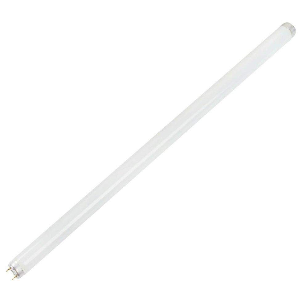 Лампа люминесцентная Osram T8 18 Вт свет холодный белый