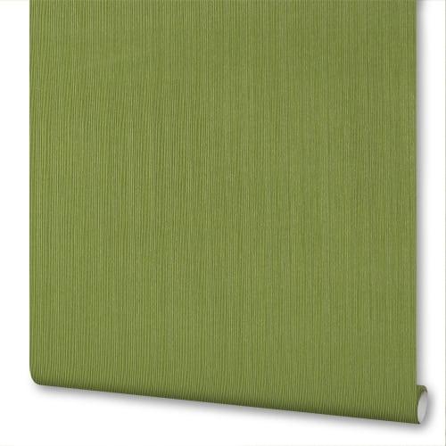 Обои флизелиновые Inspire 1.06х10.05 м цвет зеленый Па31002-77