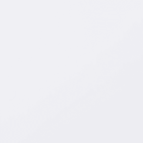 Панель ПВХ Белый матовый 3000x250x5 мм, 0.75 м²