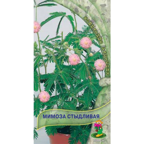 Семена Мимоза «Стыдливая»